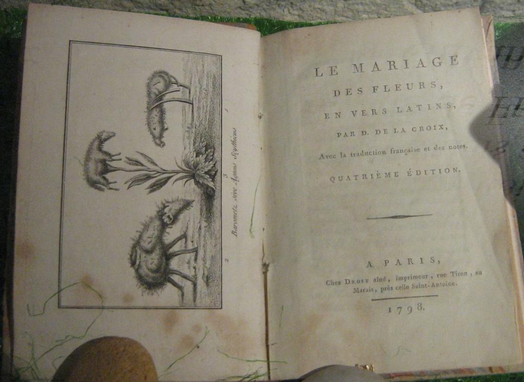 Les botanistes  - Page 4 Balagu52