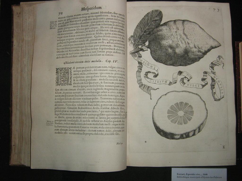 Les botanistes  - Page 4 Balagu56