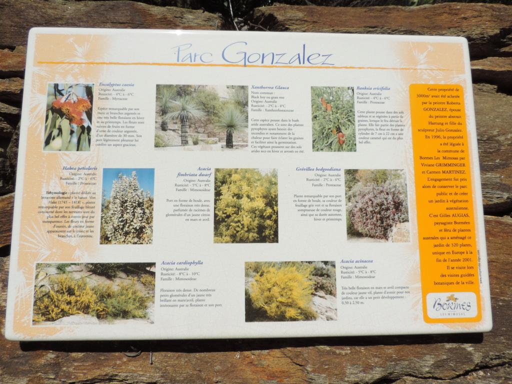 (83) Parc Gonzalez - Bormes-les-Mimosas  Bormes11