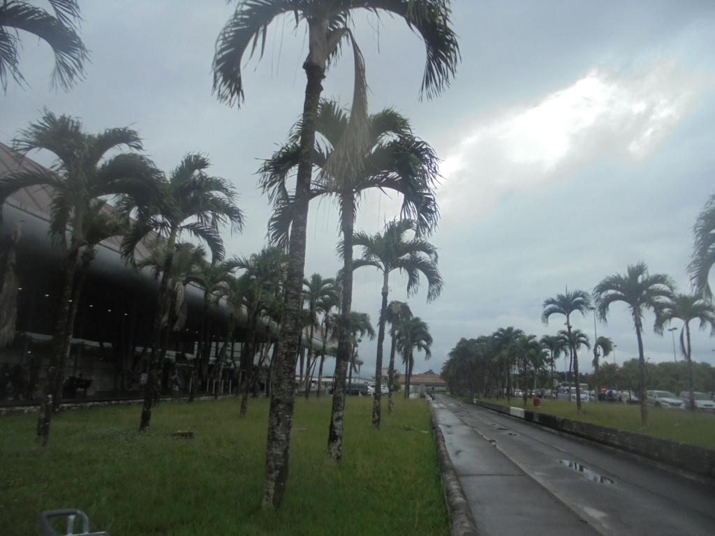 La Guyane en 2018  Dsc08611