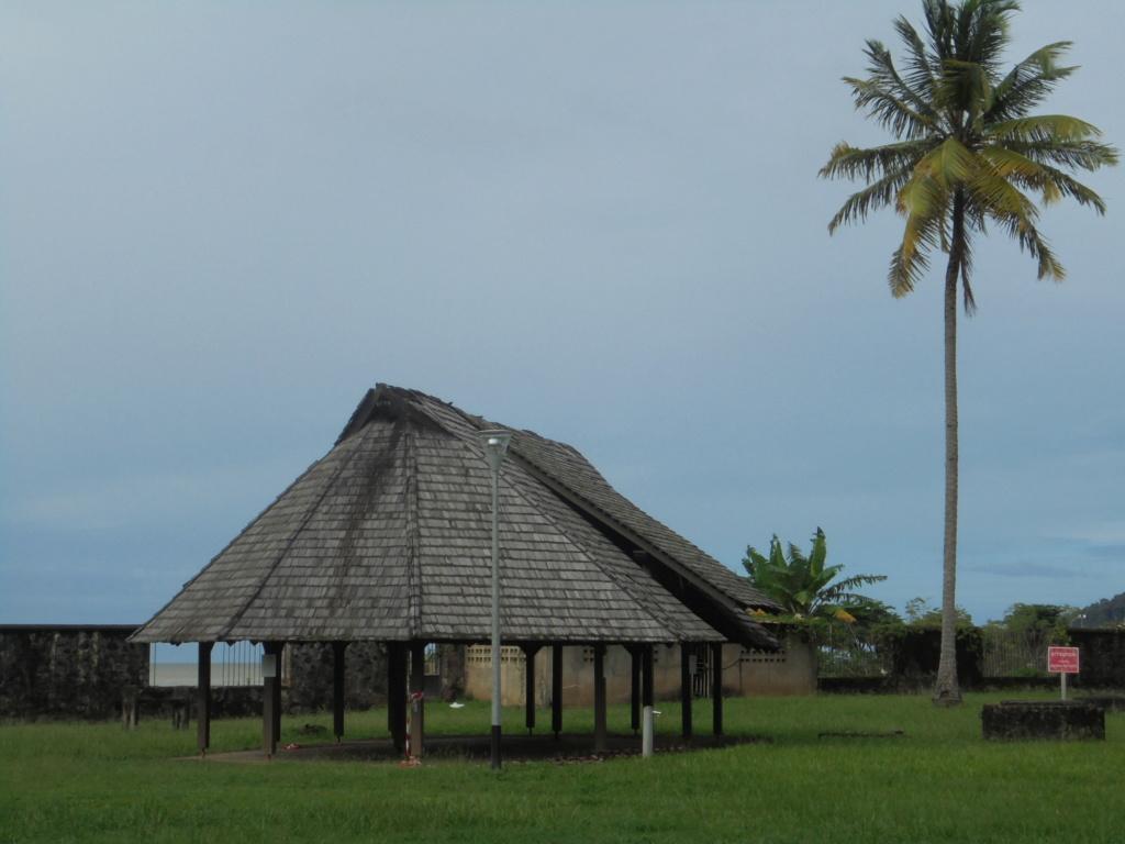 La Guyane en 2018  Dsc08615