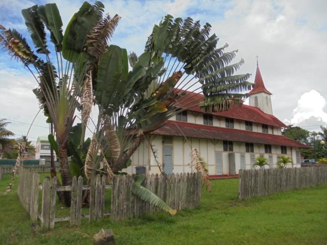 La Guyane en 2018  - Page 6 Dsc09114