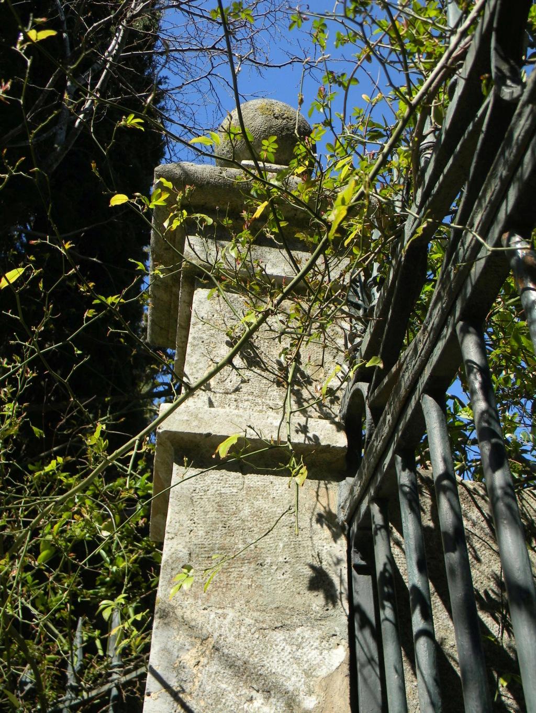 (83) Domaine d'Orvès - La Valette-du-Var Dscn0106
