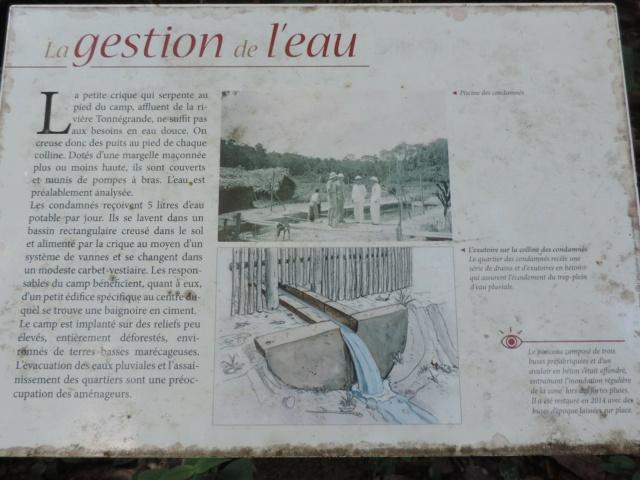 La Guyane en 2018  - Page 7 Dscn0322