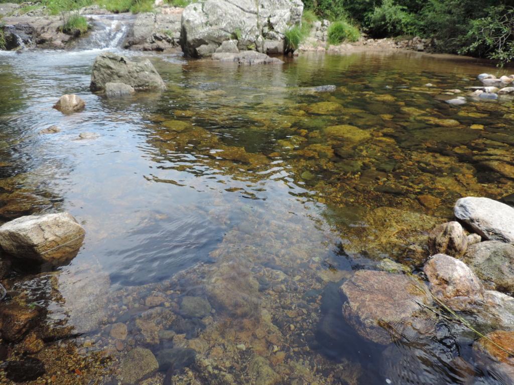 A la source de la Loire  Dscn0421