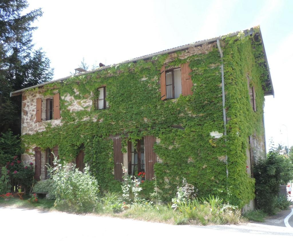 L'Ardèche dans sa splendeur  Dscn0437
