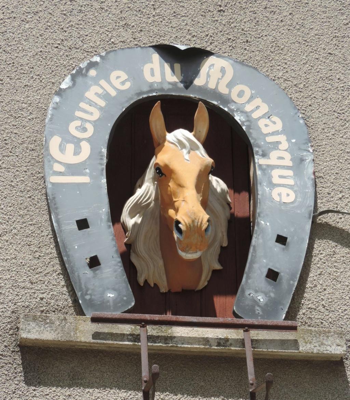 L'Ardèche dans sa splendeur  Dscn0444