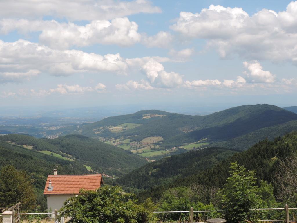 L'Ardèche dans sa splendeur  Dscn0456