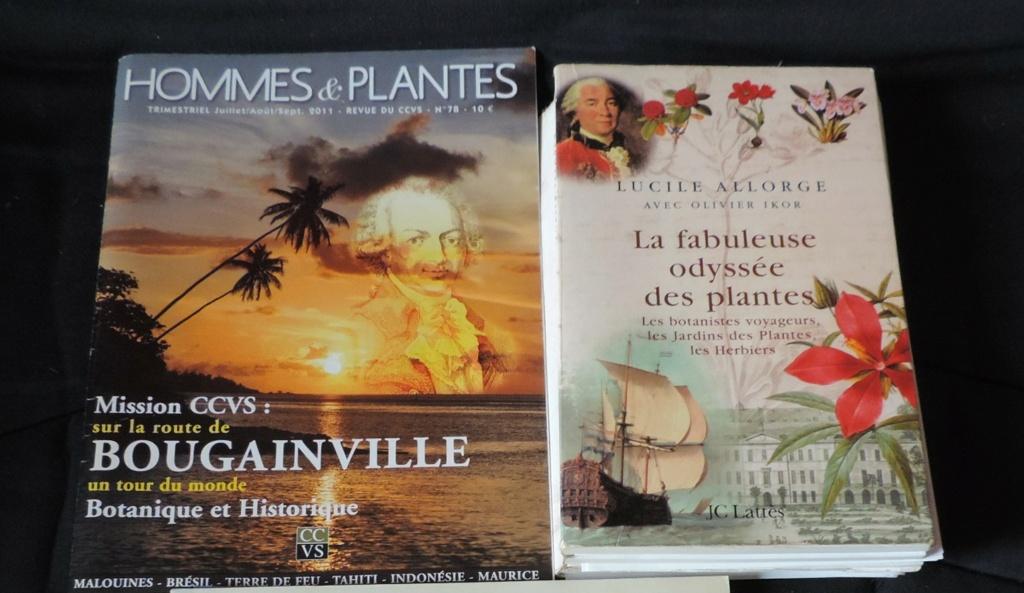 Les botanistes  - Page 2 Dscn9167