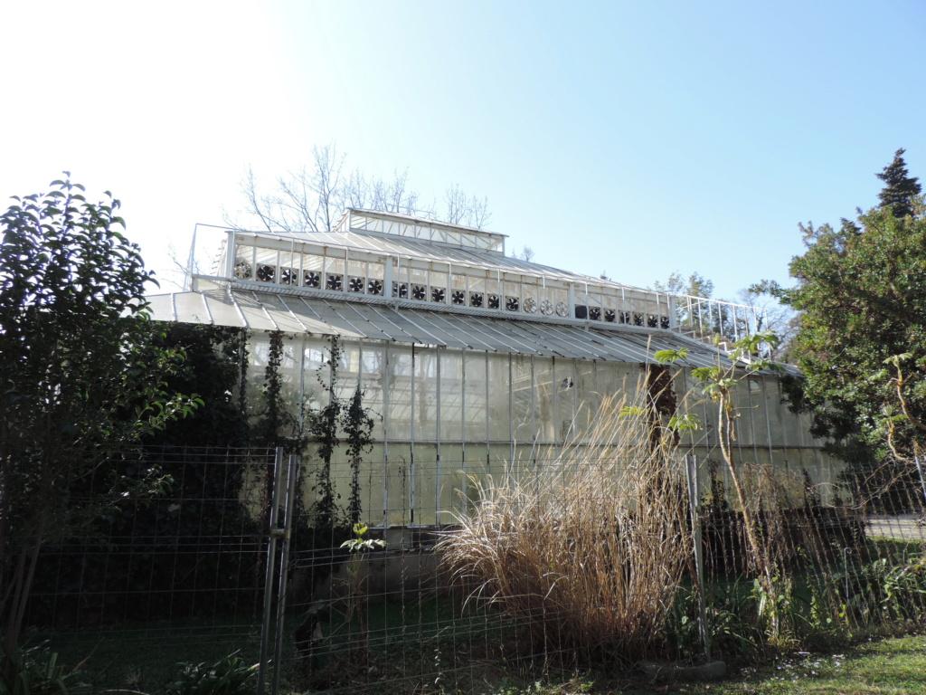 (13) Le parc Borely à Marseille  Dscn9346
