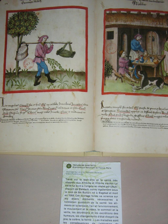 Les botanistes  - Page 4 Maroc_15