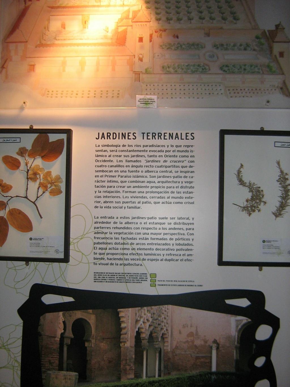 Les botanistes  - Page 4 Maroc_19