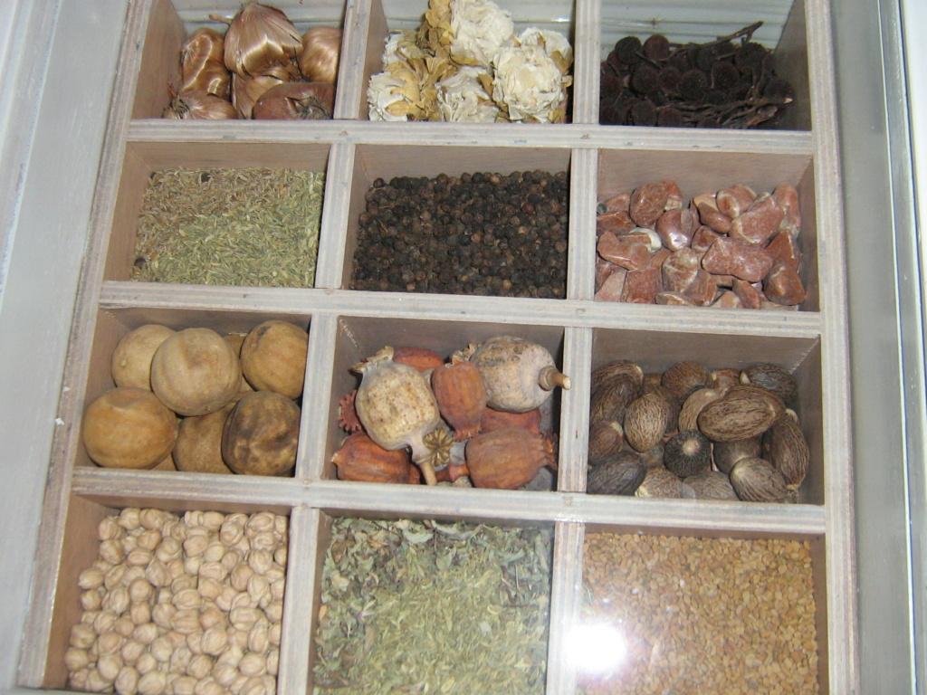 Les botanistes  - Page 4 Maroc_20