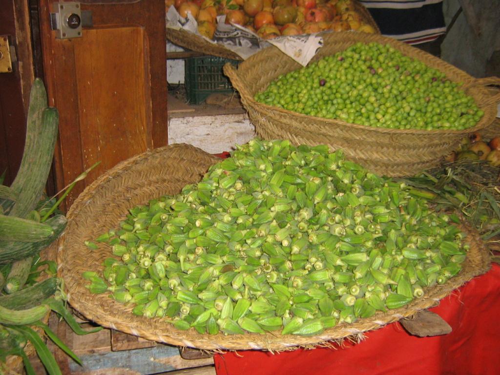 Les botanistes  - Page 5 Maroc_23