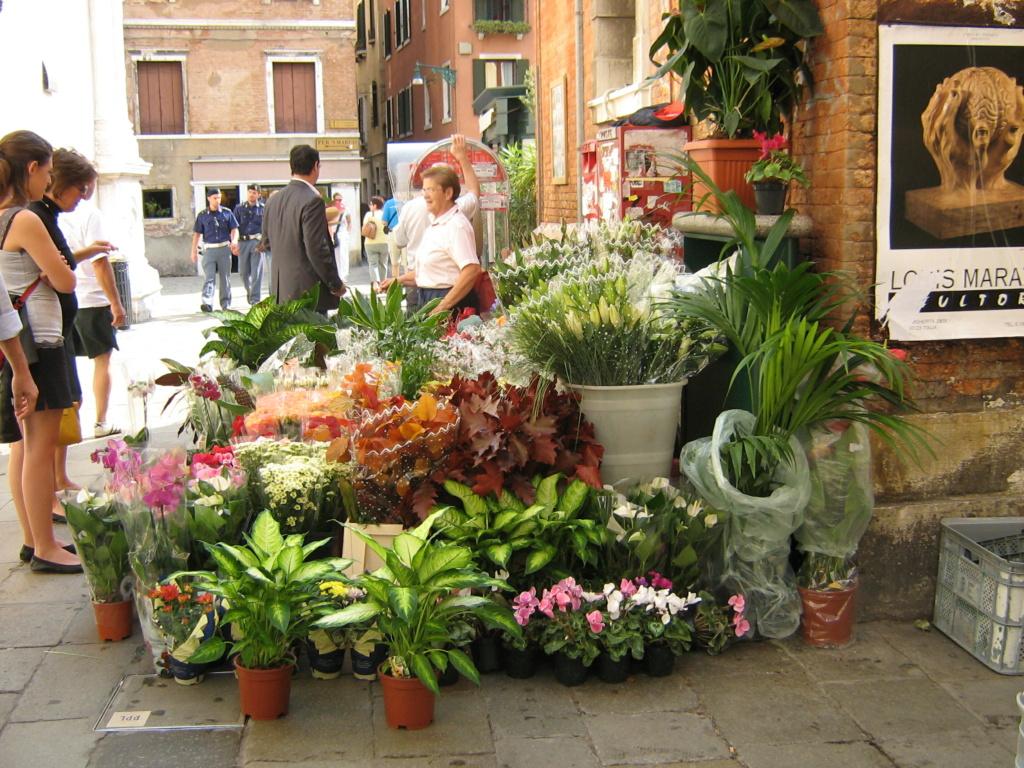 Venise paysages et jardins  Morgan25