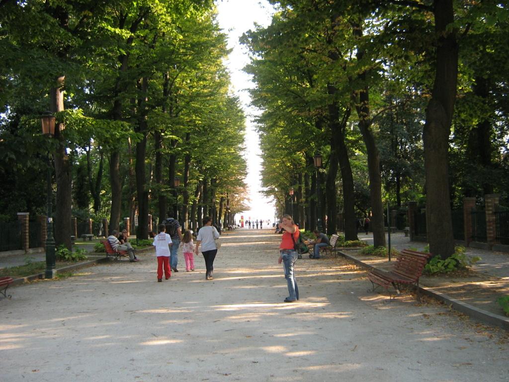 Venise paysages et jardins  Morgan37