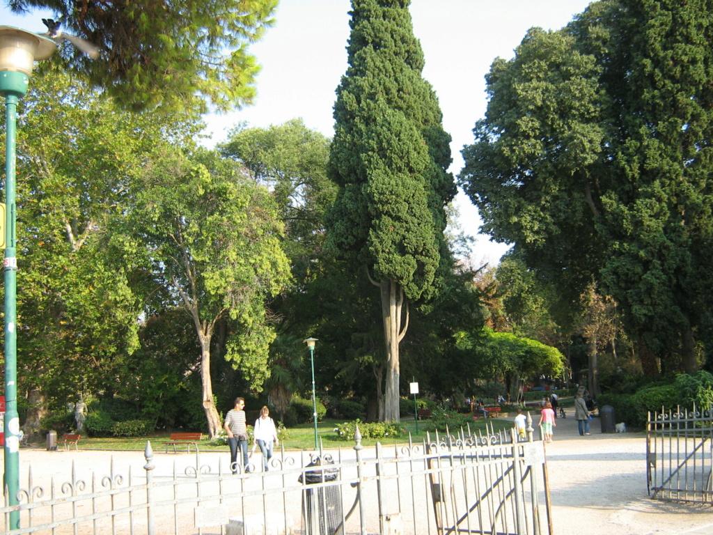 Venise paysages et jardins  Morgan44
