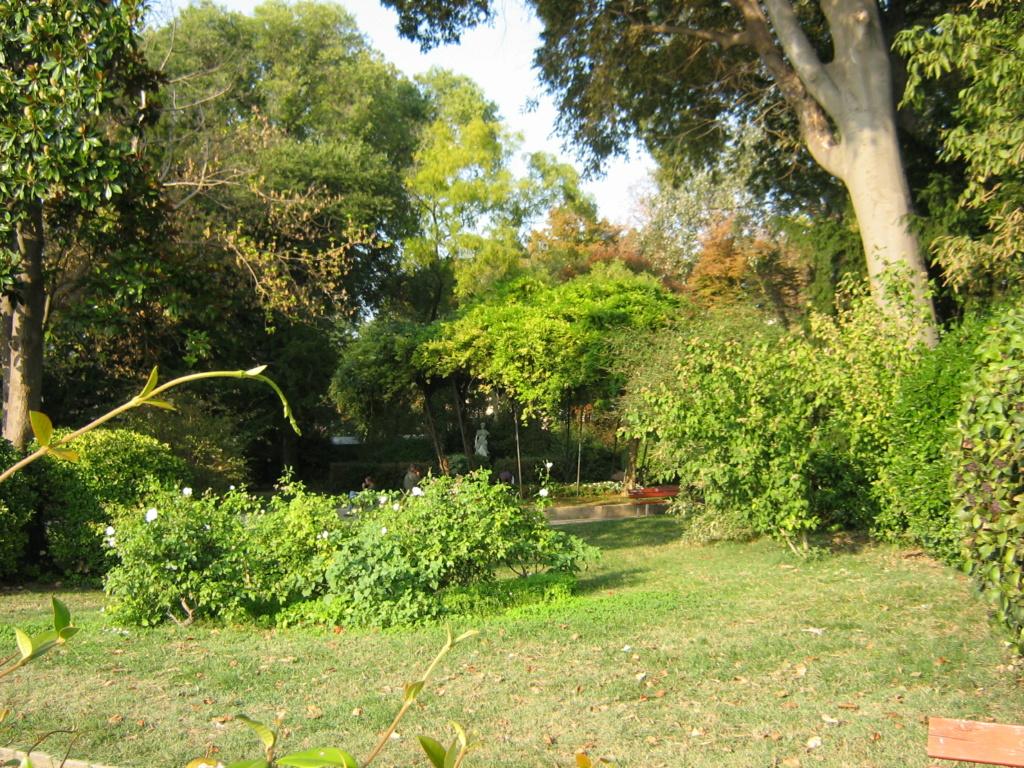 Venise paysages et jardins  Morgan46