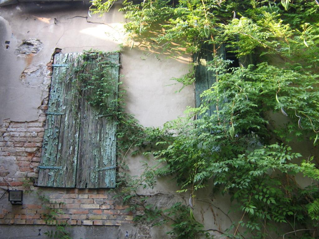 Venise paysages et jardins  Morgan48