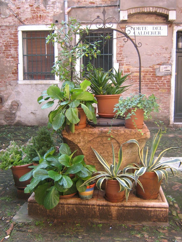 Venise paysages et jardins  Morgan51