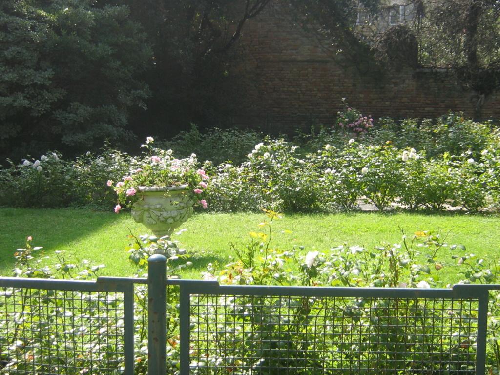 Venise paysages et jardins  Morgan52