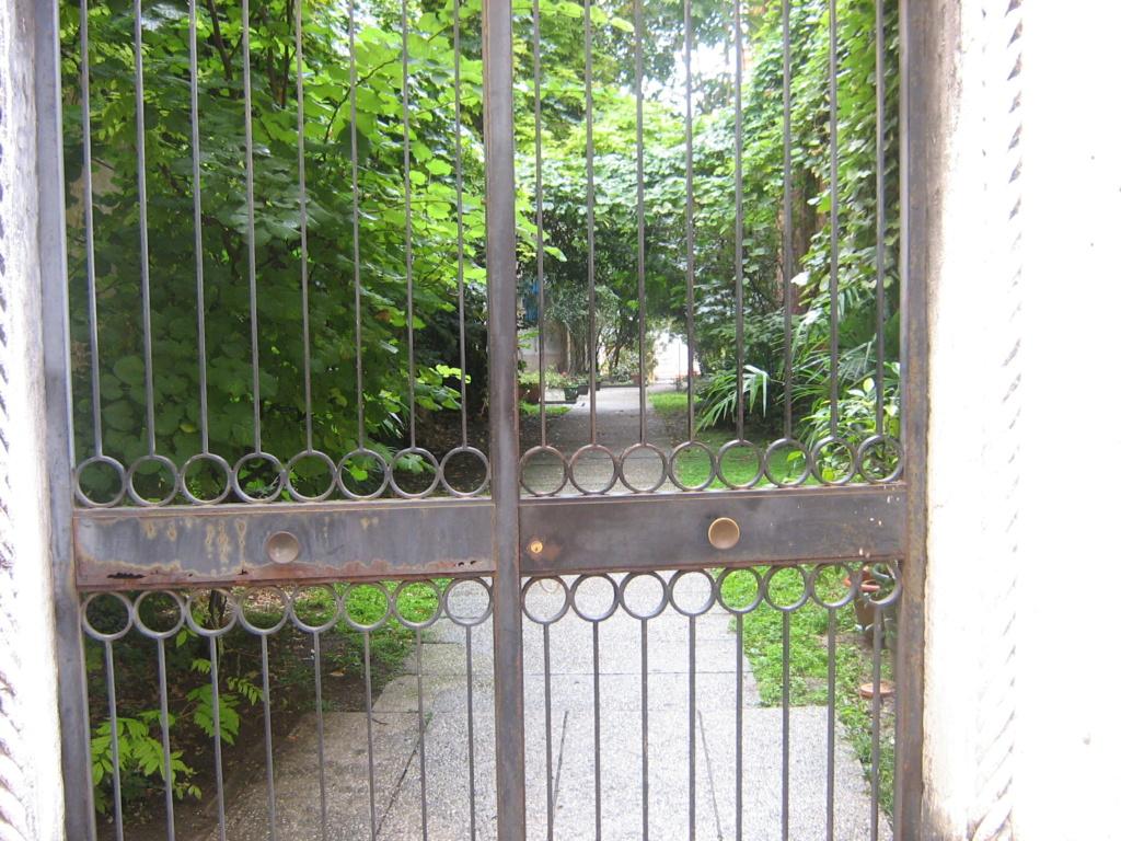 Venise paysages et jardins  Morgan56