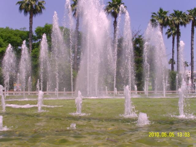 (06) Parc Phoenix - Nice Nice_p16