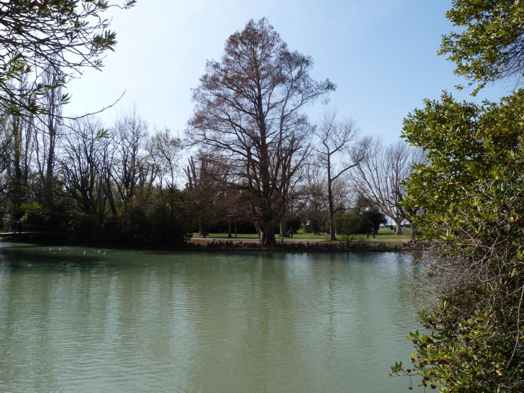 (13) Le parc Borely à Marseille  P1110228