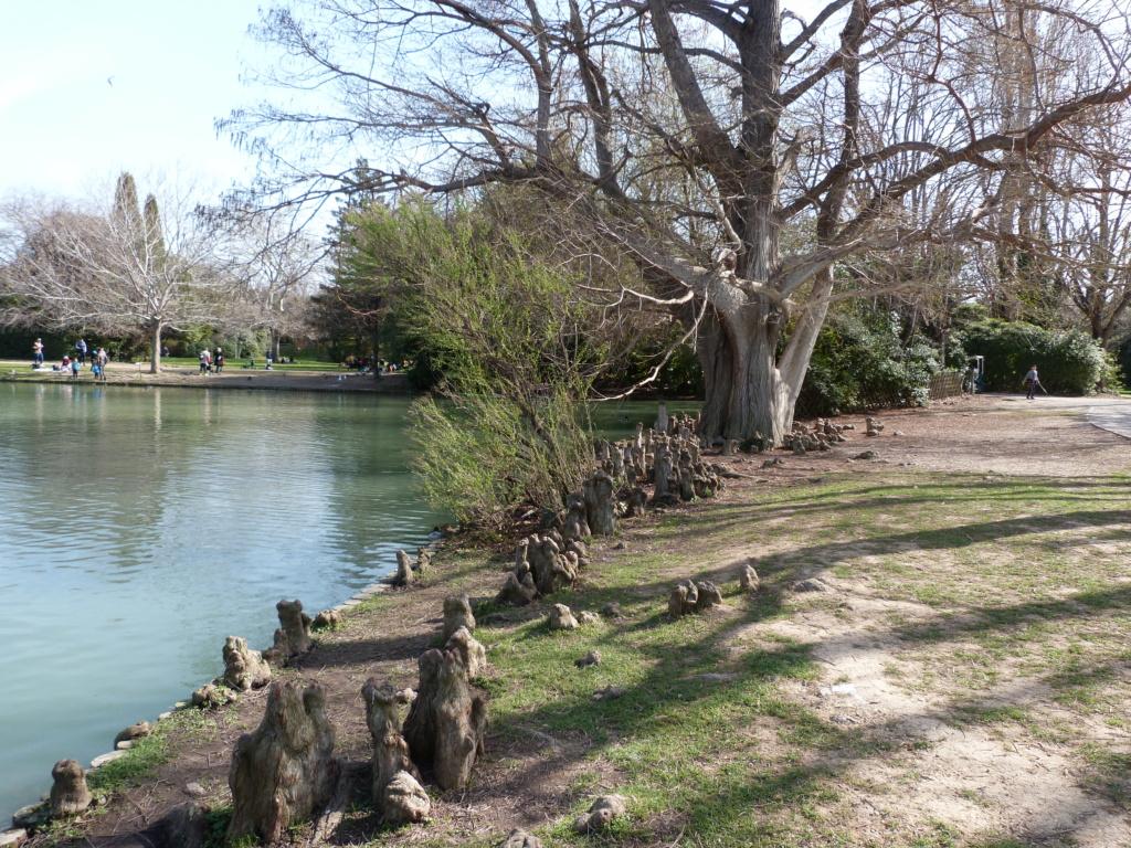 (13) Le parc Borely à Marseille  P1110313