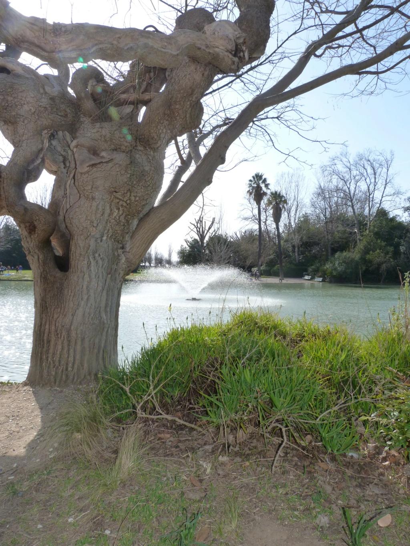 (13) Le parc Borely à Marseille  P1110318