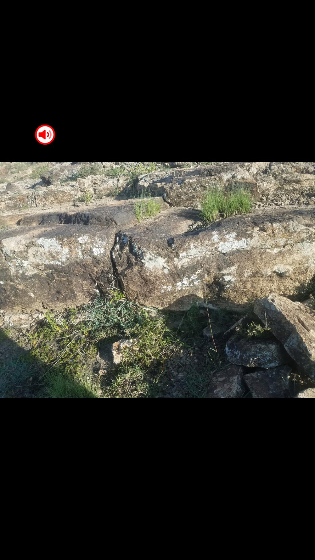 تحليل اشاره وكتابه على صخره  Screen17