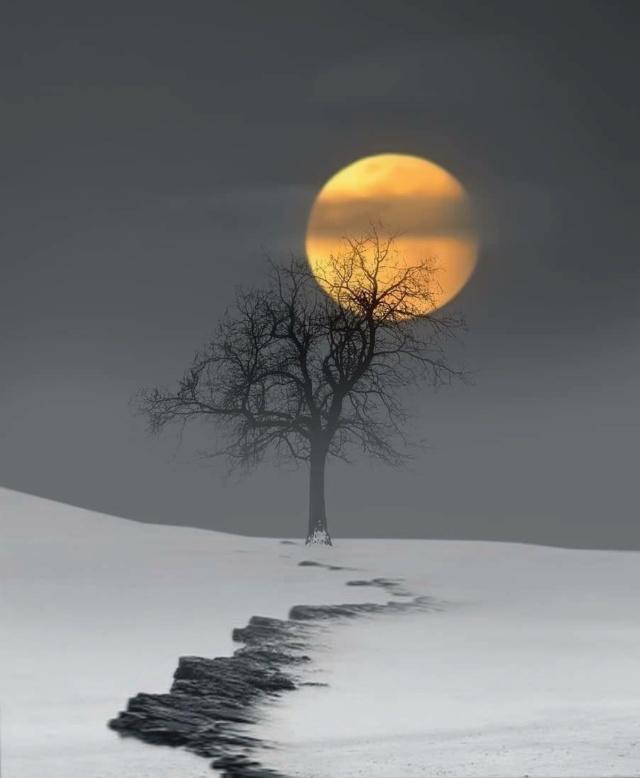 La belleza de la luna 13086010