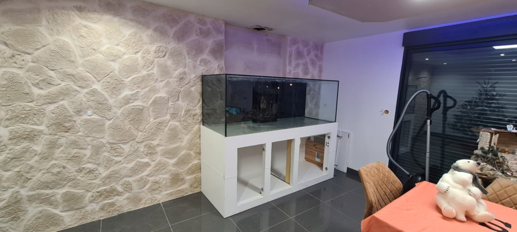 Ma nouvelle installation 1000l avec fish  room 20201210