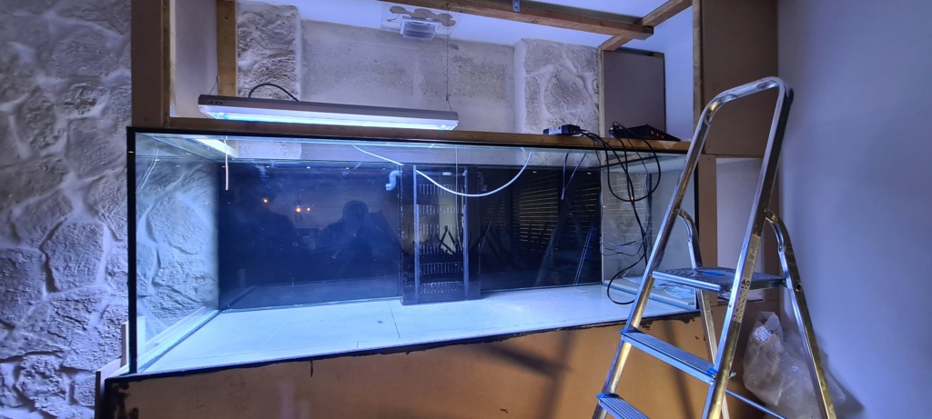 Ma nouvelle installation 1000l avec fish  room 20210210