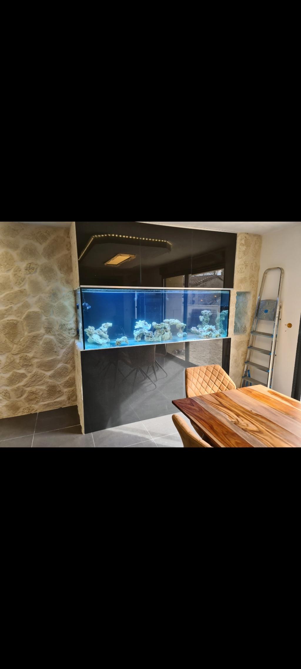 Ma nouvelle installation 1000l avec fish  room Screen13