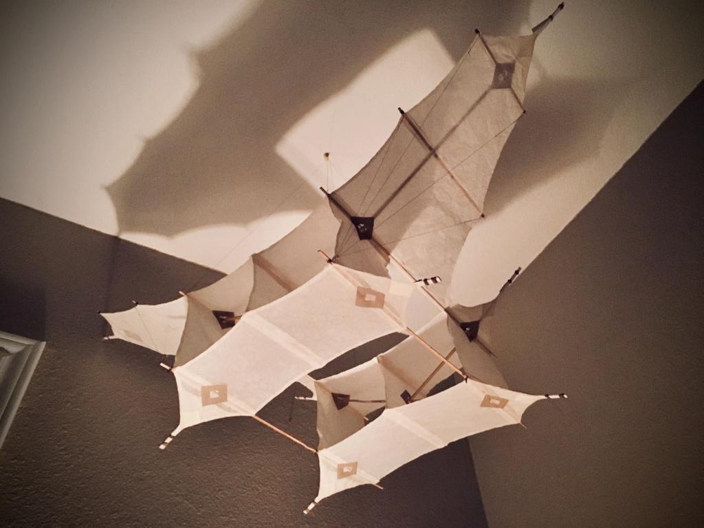 Let's Go Fly a Kite... 8622d110