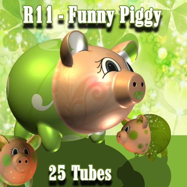 R11 Funny Piggy  034