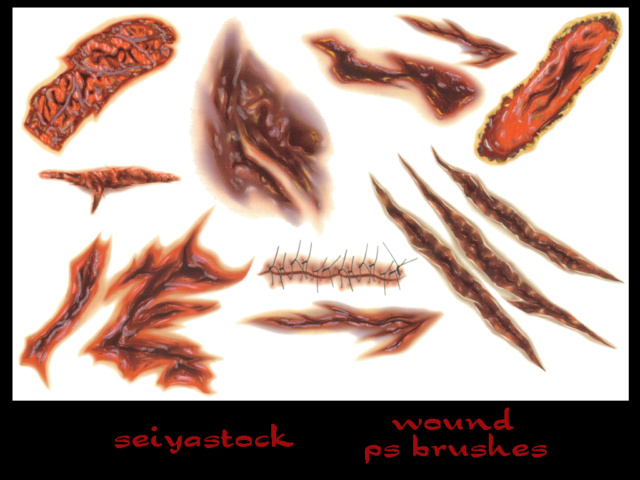 Seiyastock Wound Ps Brushes D1tohf10