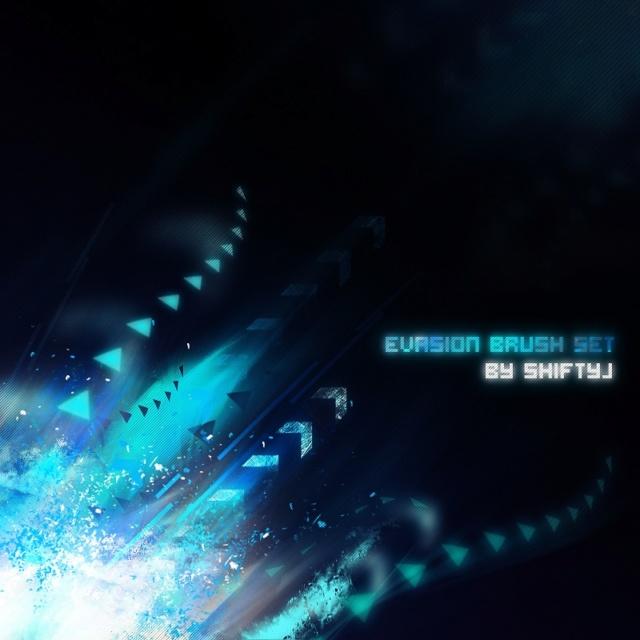 Evasion Brush Set Evasio11
