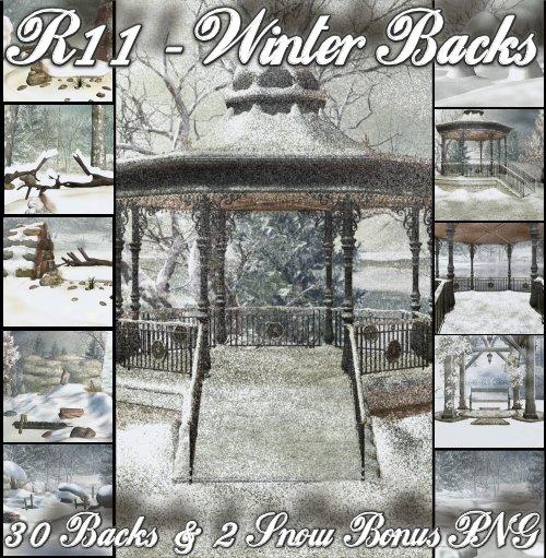 R11 - Winter Back 3D Winter10