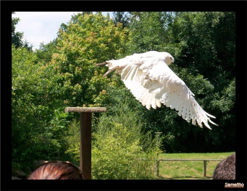 zoo Le Pal 100_4913