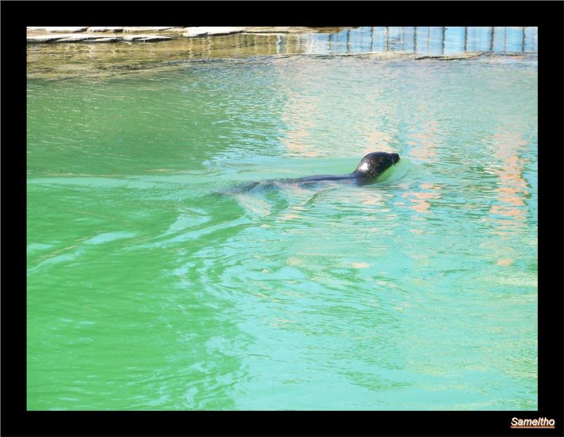 zoo Le Pal 100_4919