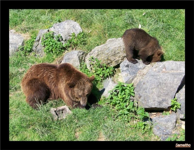 zoo Le Pal 100_4920