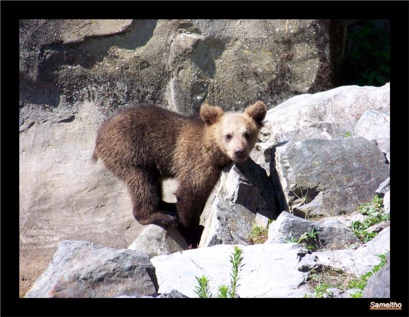zoo Le Pal 100_4921