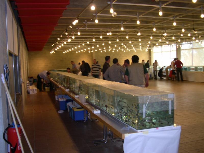 Photos de la bourse d'Arlon 2008 Dscn9210
