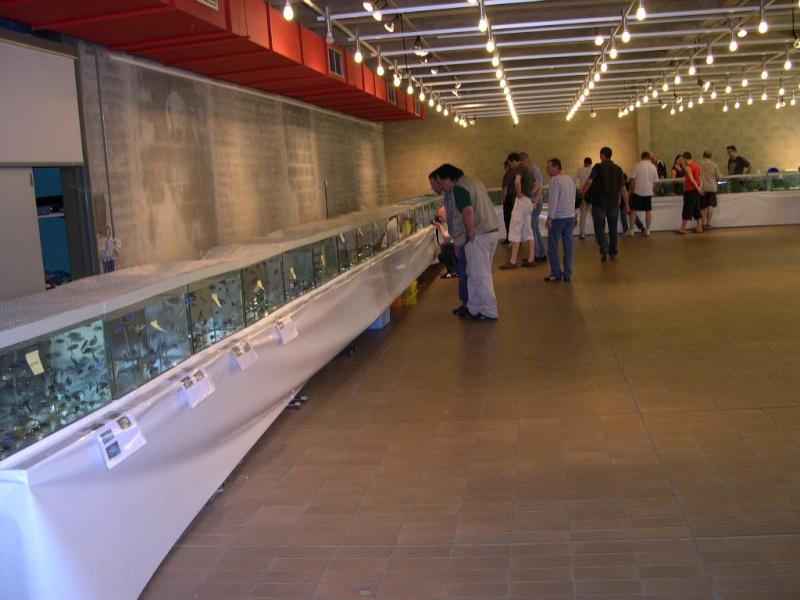 Photos de la bourse d'Arlon 2008 Dscn9211