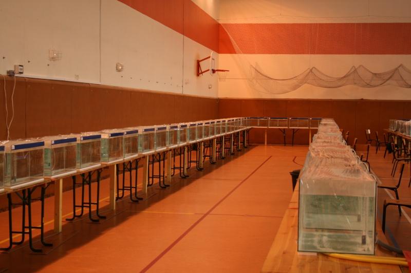 Compte rendu de nos participation au 29è congrés de L'AFC à Champ-le- Bœuf, Laxou/Maxeville (54) du 10au 12 octobre 2008 Img_3411