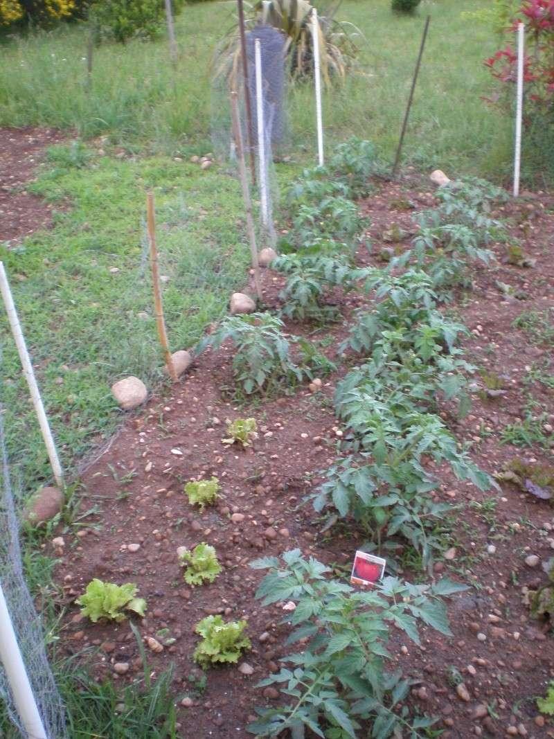 Mon jardin Orto_010