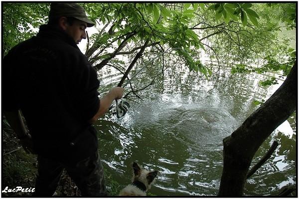 La pêche à roder (stalking) Arbre_10