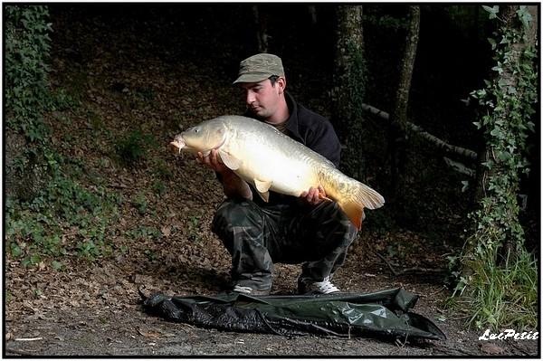 La pêche à roder (stalking) Carpe_12